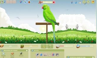 Birdrama - Il tuo nuovo uccello