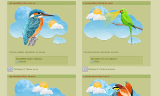 Birdrama - Le esposizioni ornitologiche